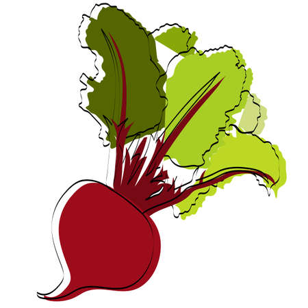 Silhouette of a vegetable. Beet. Vector illustration.
