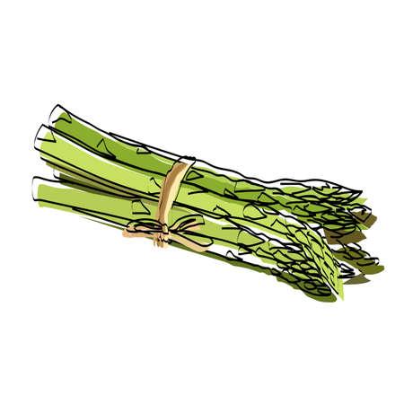 Silhouette of a vegetable. Asparagus. Vector illustration. Ilustração