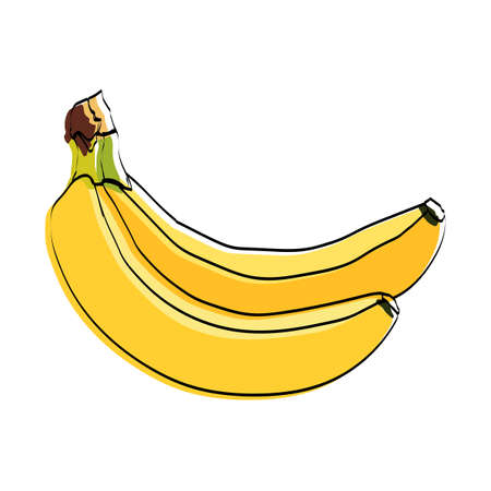 Silhouette of a fruit. Bananas. Vector illustration.