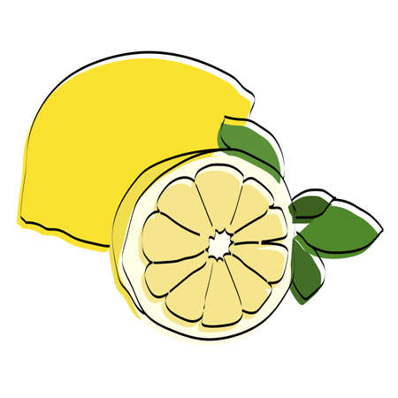 Silhouette of a fruit. Lemon. Vector illustration. Ilustração