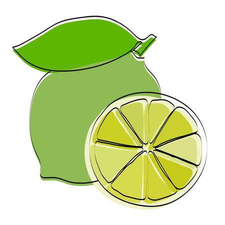 Silhouette of a fruit. Lime. Vector illustration. Ilustração