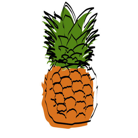 Silhouette of the fetus. A pineapple. Vector illustration.
