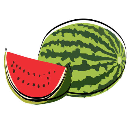 Silhouette of berries. Watermelon. Vector illustration.