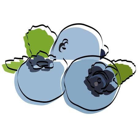 Silhouette of berries. Blueberry Vector illustration. Ilustração