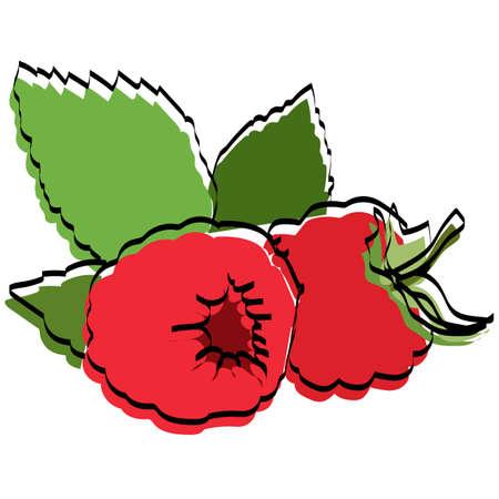 Silhouette of berries. Raspberries Vector illustration. Ilustração
