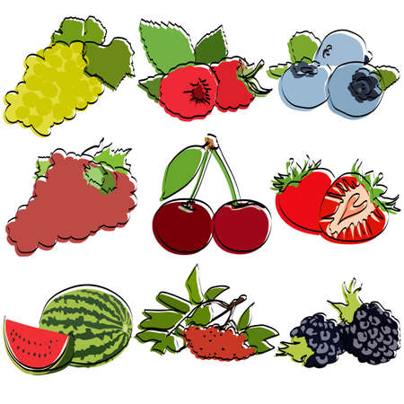 Berries set. Silhouettes. Flat vector illustration.