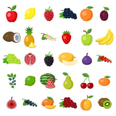 pomegranat: Fruits set on white. fruits including apple, lemon, raspberry, grape, orange, plum, coconut, pineapple, white currant, strawberry, banana, pomegranat, blackberry, melon, fig, lime, pear, cherry, kiwi. Illustration