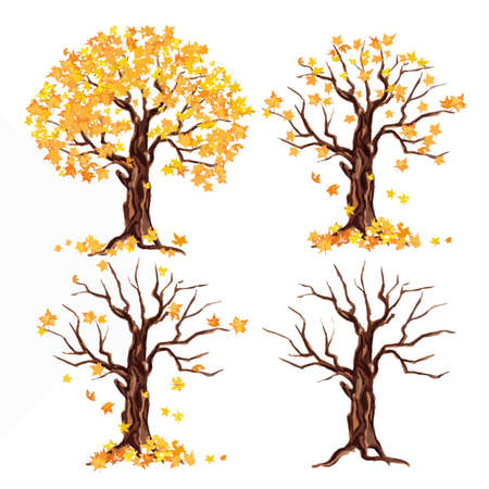 leaves falling: weatercolor autumn tree set on white background. Yellow and orange leaves falling. Illustration