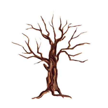 Isolated watercolor dry tree on white background. Fall, autumn, spring nature. Fine tree.