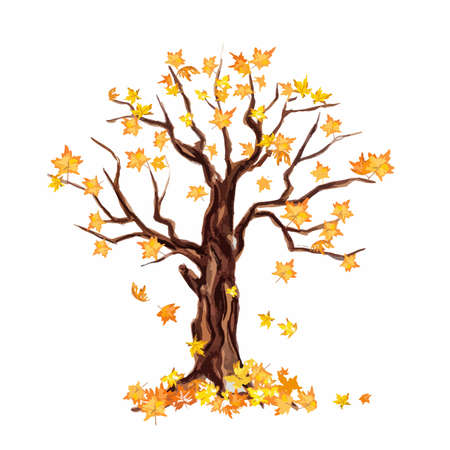leaves falling: Isolated watercolor dry tree on white background. Fall, autumn, spring nature. Fine tree. Yellow leaves falling. Illustration