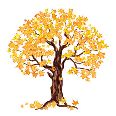Isolated watercolor dry tree with yellow leaves on white background. Fall, autumn, spring nature. Fine tree. Yellow leaves falling.