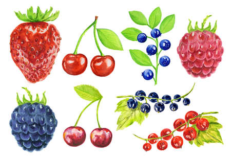 kind: Watercolor berries set on white background. Fresh healthy set of different kind of berries as strawberry, blackberry, cherry and more.