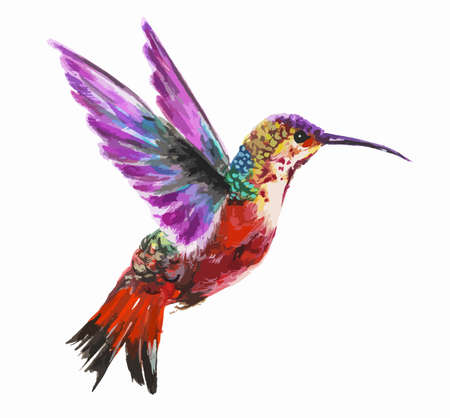 small world: Isolated watercolor hummingbird on white background. Tropical bird from exotic fauna. Colorful wildlife.