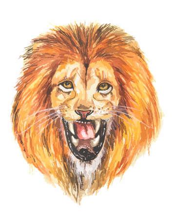 Watercolor lion roar. Big fierce lion roaring. Hand drawing illustartion. Vektorové ilustrace