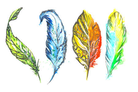 intensity: Watercolor colorful feathers set on white background. Birds feathers for boho style and decoration.