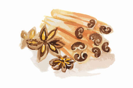 spice: Watercolor anise and cinnamon. Isolated spice on white background. Seasoning for meal or dessert.