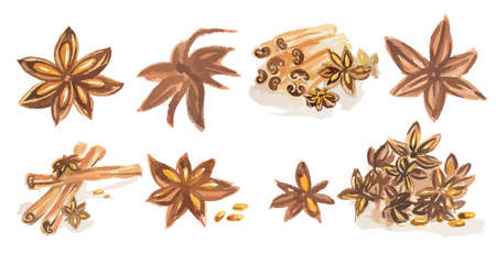 anise: Watercolor spices set. All types of spices as cinnamon, anise, nutmeg, vanilla and more. Brown art.