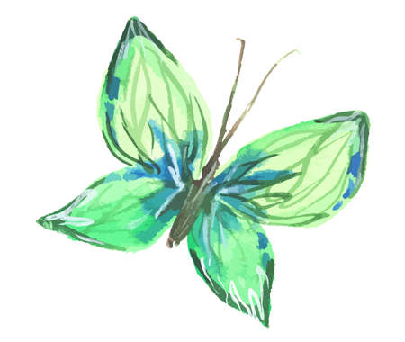 green butterfly: Isolated watercolor green butterfly on white background. Beautiful fragile creature for decoration.