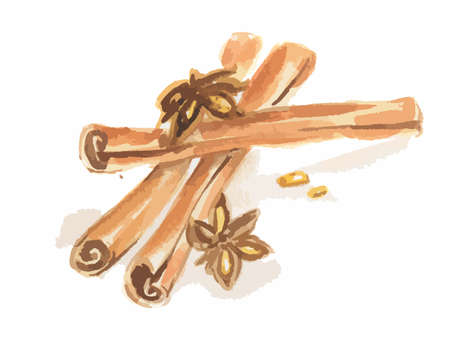 anise: Watercolor anise and cinnamon. Isolated spice on white background. Seasoning for meal or dessert.