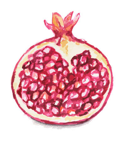 Isolated watercolor garnet on white background. Ripe and juicy fruit with vitamins.
