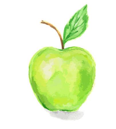 Isolierte Aquarell grüner Apfel auf weißen Hintergrund. Süß oder sauer Obst mit Vitaminen.