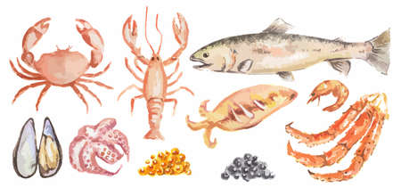 Watercolor seafood set. All kinds of sea animals as lobster, shrimp, salmon and more. Fresh and healthy food.