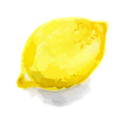 limon: Isolated watercolor lemon on white background. Sour and tasty fruit with vitamins. Citrus fruit.