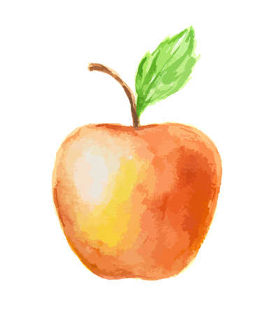 nature one painted: Isolated watercolor red apple on white background. Fresh and sweet fruit. Organic and vegetarian nutrition.