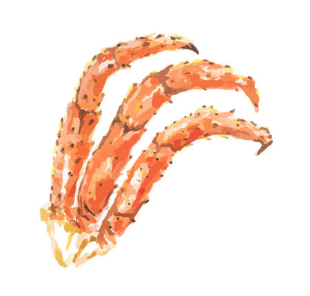 crab legs: Isolated watercolor crabs claws on white background. Helathy gourmet seafood. Illustration