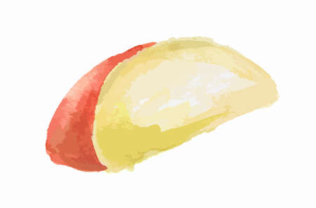 gourmet food: Isolated watercolor cheese on white background. Tasty and healthy snack. Dairy gourmet food. Illustration
