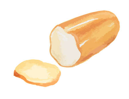 Isolated watercolor cheese on white background. Tasty and healthy snack. Dairy gourmet food. Illustration