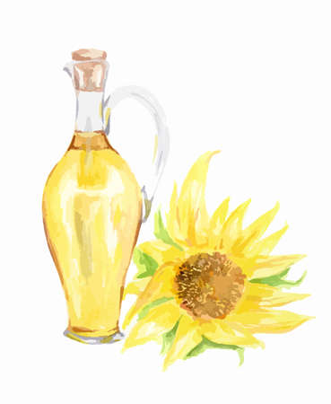 Watercolor sunflower oil bottle with sunflower on white background. Healthy and useful oil for frying and dressing.