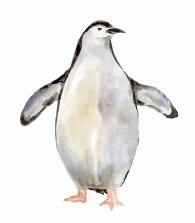 Isolated watercolor penguin on white background. Antarctic animals.