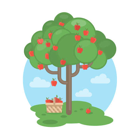Isolated apple tree with basket. Concept of harvest, fresh fruits and gardening. Illustration