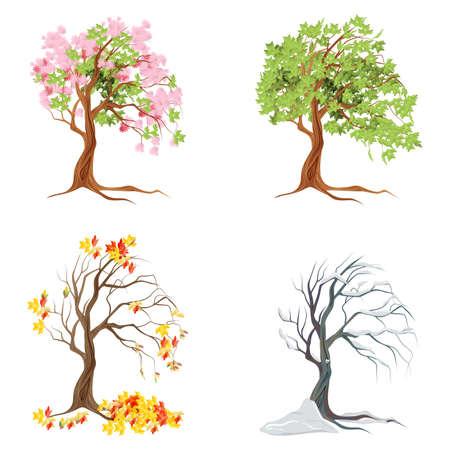 Arbres de quatre saisons sur fond blanc. Été, printemps, automne et hiver. Vecteurs