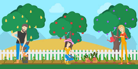 Farmers in the garden. People collect harvest as fruits from the trees. Illustration