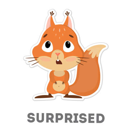 Isolated surprised squirrel. Illustration