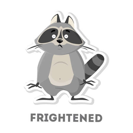 Isolated frightened raccoon on white background. Funny cartoon animal.