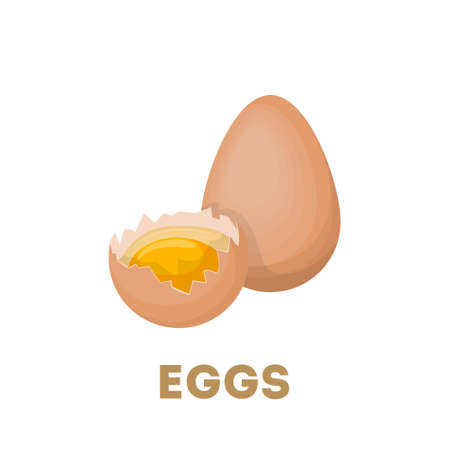 broken eggs: Isolated raw eggs with yolk on white background. Illustration