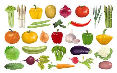 All vegetables set.