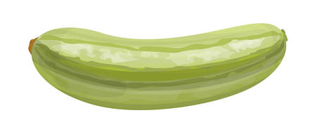 Isolated fresh green marrow on white background. Zdjęcie Seryjne - 88752617