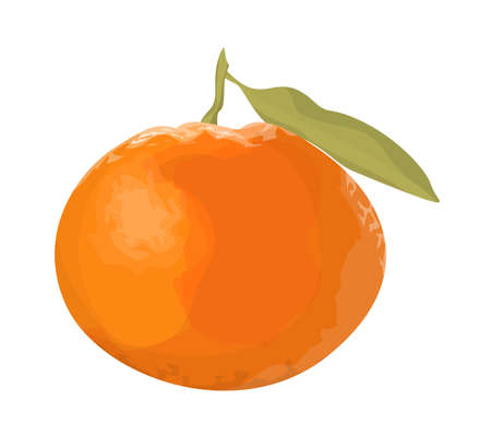Isolated fresh orange tangerine on white background.