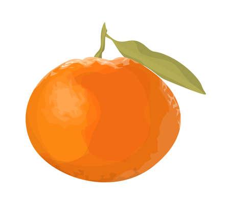 Isolated fresh orange tangerine on white background.
