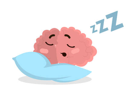 Isolated sleeping brain on pillow on white background.