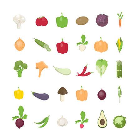 Vegetables illustrations set. Illustration
