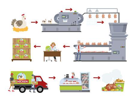 Zestaw fabryczny kurczaka. Robienie mięsa na roślinie.