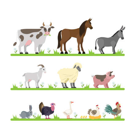 Cute farm animals set. Goat, cow, ship and other animal characters standing in the grass. Domestic birds such as hen and goose. Isolated flat vector illustration