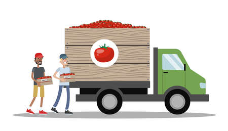 Big truck full of boxes with tomato. Vegetable manufacture. Workers carrying boxes to the vehicle. Fast delivery. Isolated vector flat illustration
