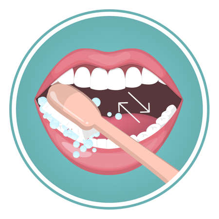 How to brush your teeth instruction. Toothbrush and toothpaste for oral hygiene. Clean white tooth using back and forward motion. Healthy lifestyle and dental care. Isolated flat vector illustration