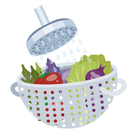 Wshing vegetable in the water for cooking. Natural food for healthy nutrition. Hygiene concept. Isolated vector flat illustration